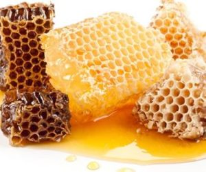Bee products and Collecting honey and bees