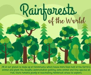 Infographic: Rainforests of the World